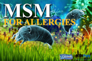 MSM for Allergies